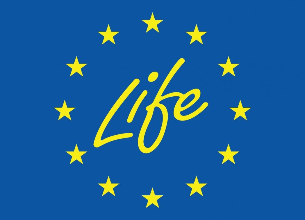 La UE invierte más de 100 millones EUR en nuevos proyectos del Programa LIFE para promover una Europa verde y climáticamente neutra
