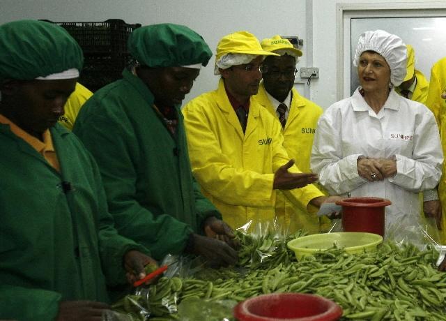 Coronavirus: la Comisión Europea insta a adoptar medidas para proteger a los trabajadores de temporada
