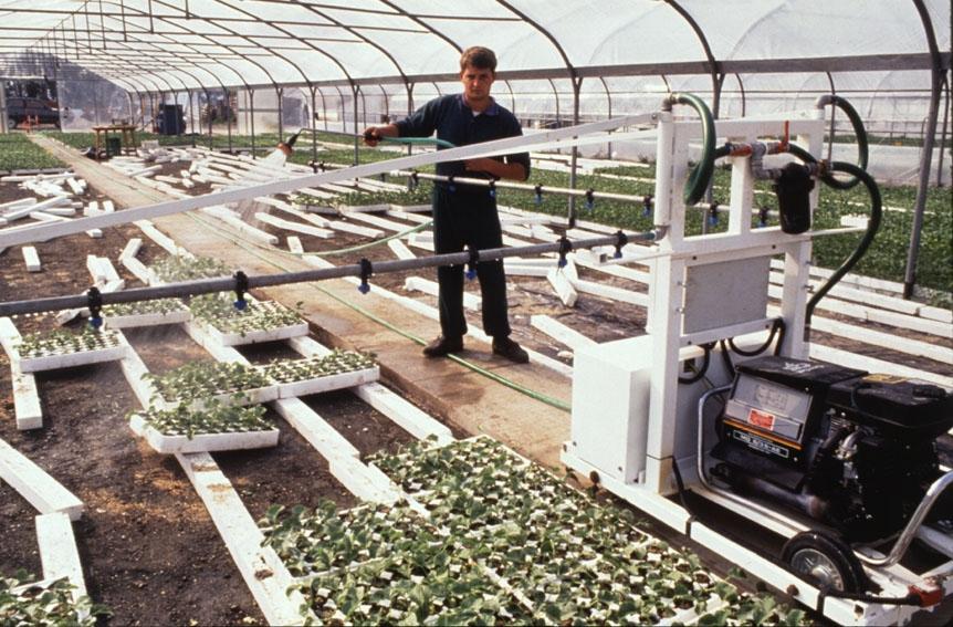 Un estudio de la Comisión constata la repercusión positiva de los acuerdos comerciales en los sectores agroalimentarios