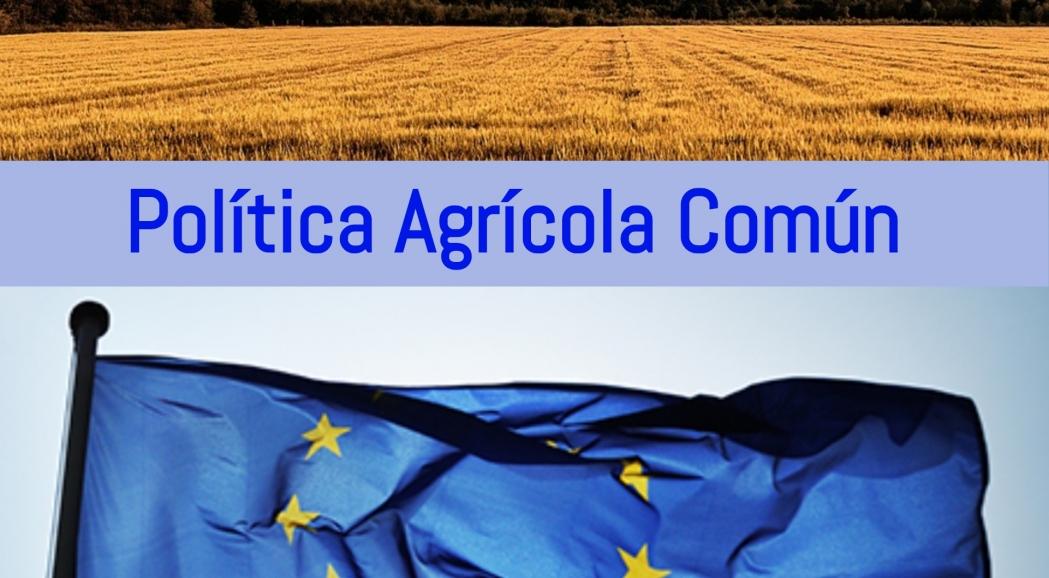 Preguntas y respuestas sobre el presupuesto de la UE: la política agrícola común y la política pesquera común