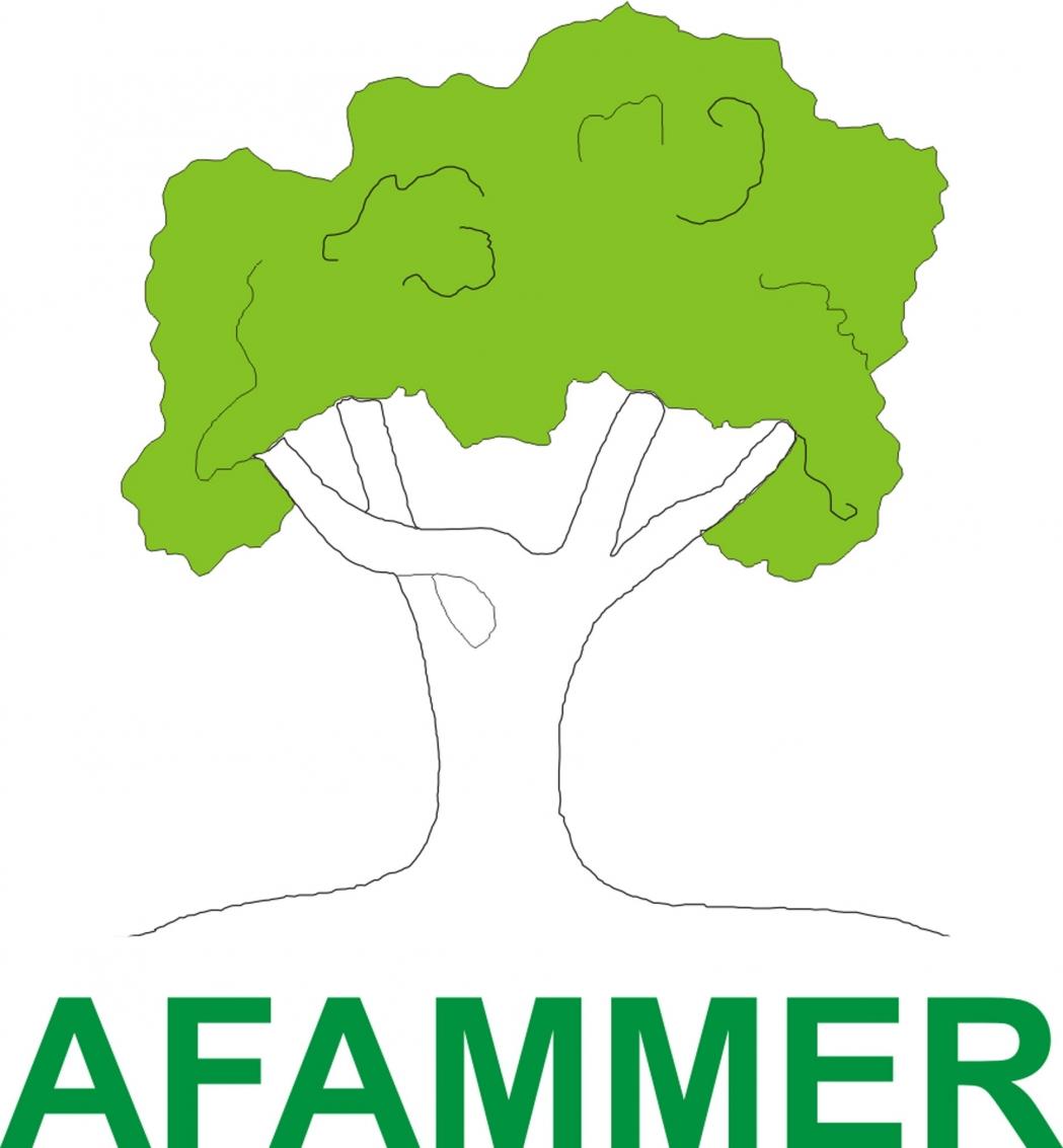 AFAMMER RECIBE EL PREMIO SOLIDARIDAD CIVIL DEL COMITÉ ÉCONÓMICO Y SOCIAL EUROPEO