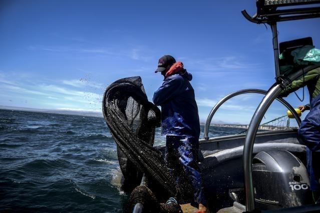 Pesca sostenible: la Comisión hace balance de los progresos en la UE y pone en marcha una consulta sobre las posibilidades de pesca para 2022