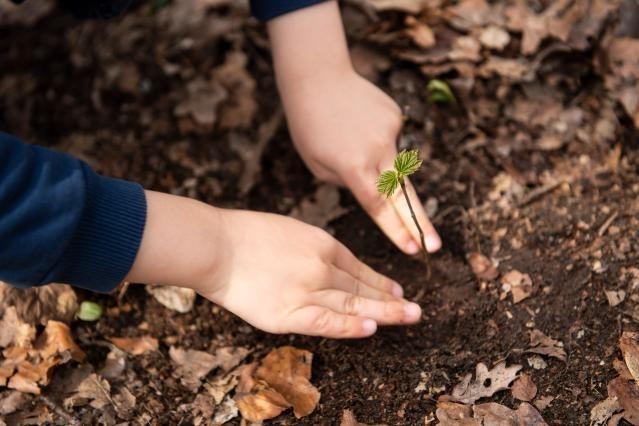 Acuerdo político sobre la nueva política agrícola común: más justa, ecológica y flexible